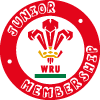 WRU Youth Dragon Membership