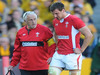 Wales skipper Sam Warburton is forced to leave the field through injury.