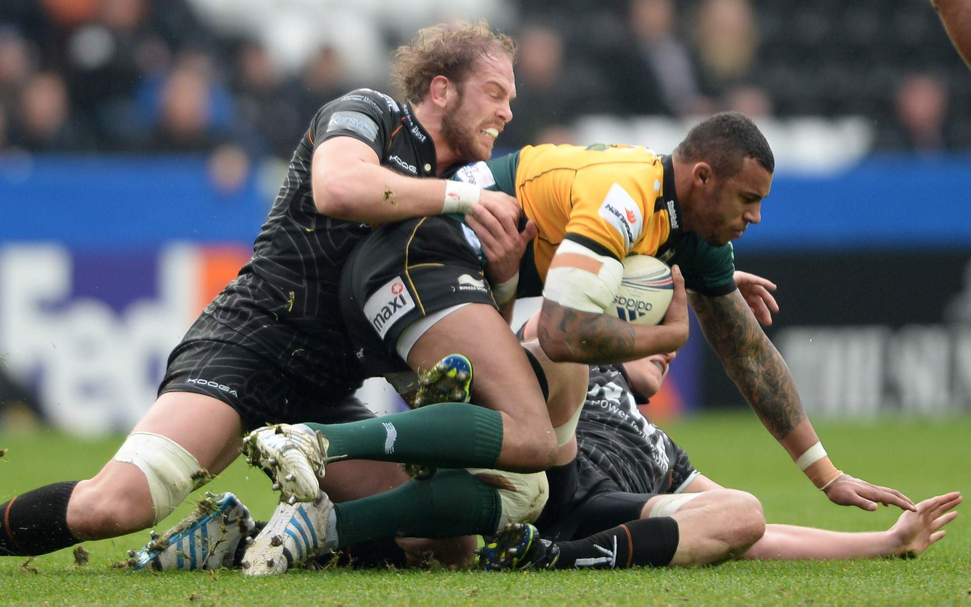 Ospreys put unbeaten record on the line at Northampton