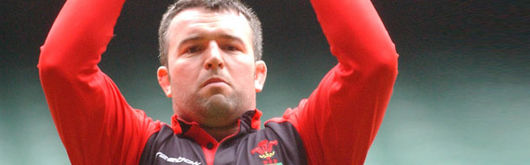 Mefin Davies replaces Robin McBryde