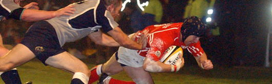 Barry Davies scores against Munster at Stradey Park in the 25-12 Magners League victory this season, Scarlet fans will be hoping for more of the same in the Heineken Cup quart-final
