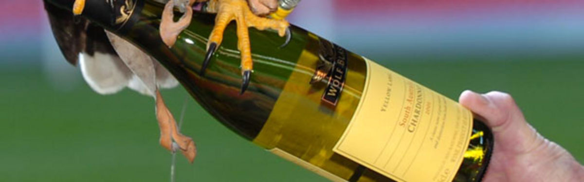 A bird of prey perches on a bottle of Wolf Blass wine, the new exclusive wine partner to the WRU and Millennium Stadium