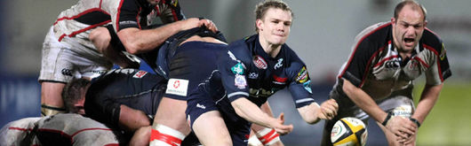Scarlets scrum half Dwayne Peel in action during Friday's Magners League match against Ulster
