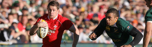 Shane Williams scored a superb try for Wales in Bloemfontein but it wasn't enough as the Springboks powered to a 43-17 victory