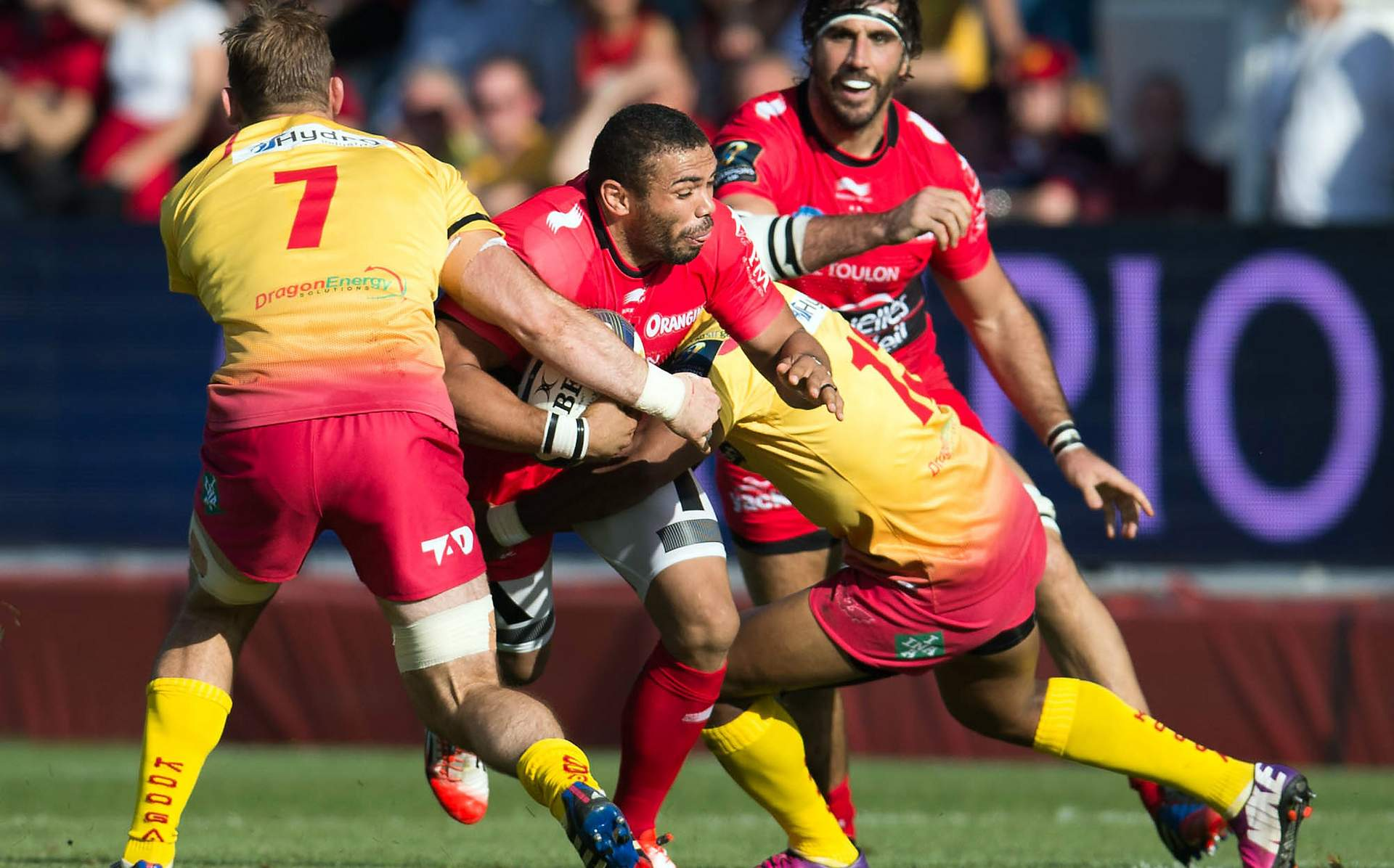 REPORT: Scarlets push Toulon all the way