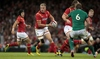 All you need to know about Ireland v Wales