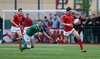 Wales denied after Irish comeback