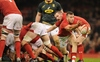 REPORT: Wales down South Africa and seal Under Armour Series clean sweep