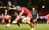 REPORT: Scarlets battle past Dragons