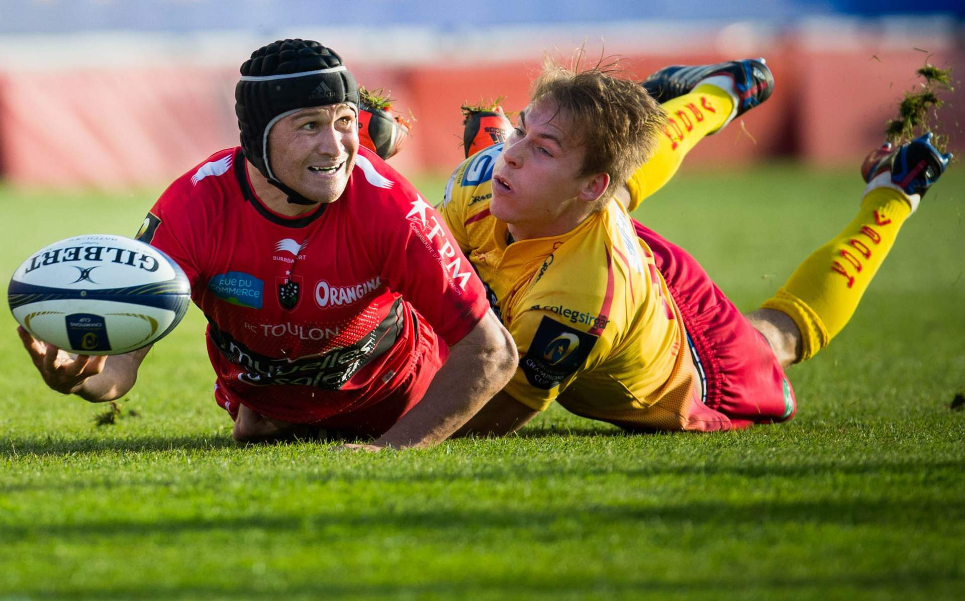Home form key for Scarlets