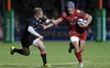 REPORT: Determined Scarlets make champions work