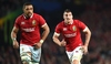'Lions series has prepared Welsh players for All Blacks test