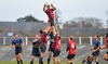 B&I Cup Preview: Scarlets on course for quarters