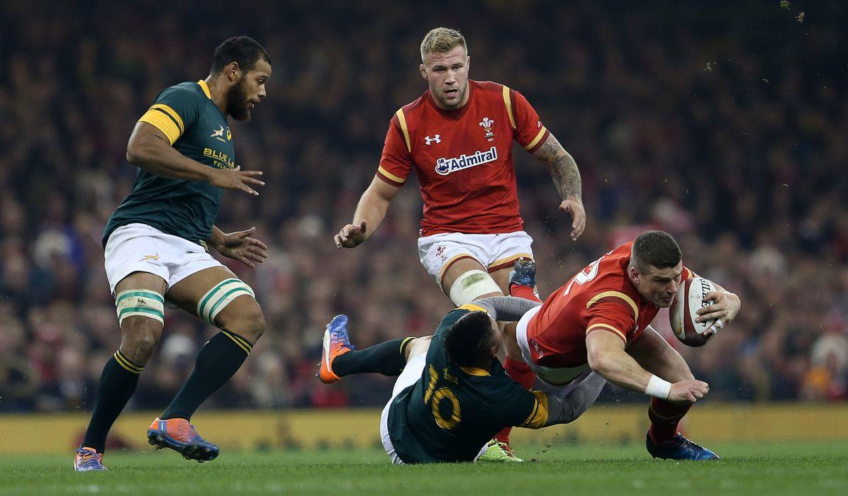 Wales V South Africa Odds