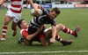 Wing Webber flies in for Ponty