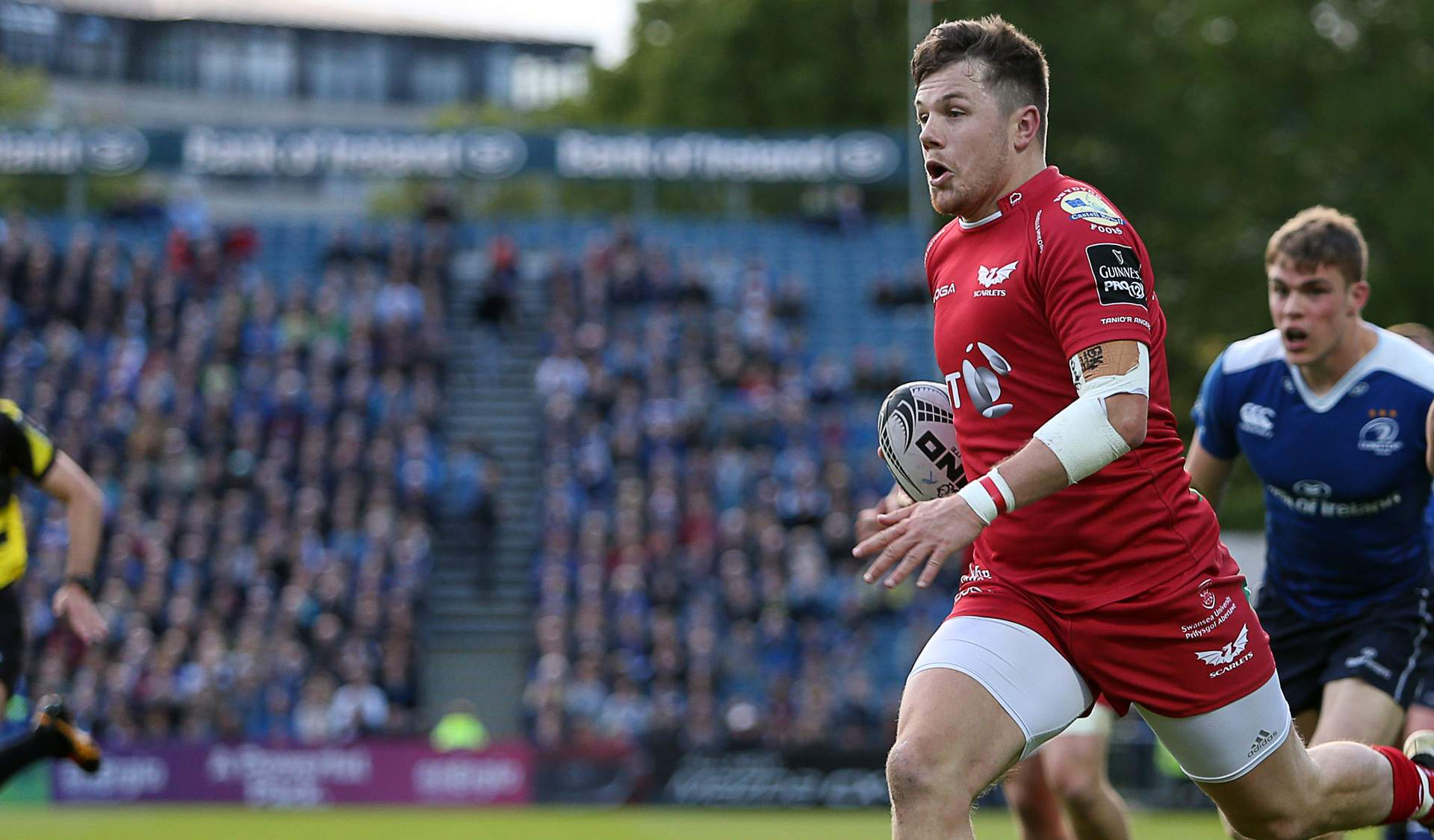 Scarlets wing Evans free to play in PRO12 final