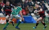 REPORT: Dragons edged out by Benetton